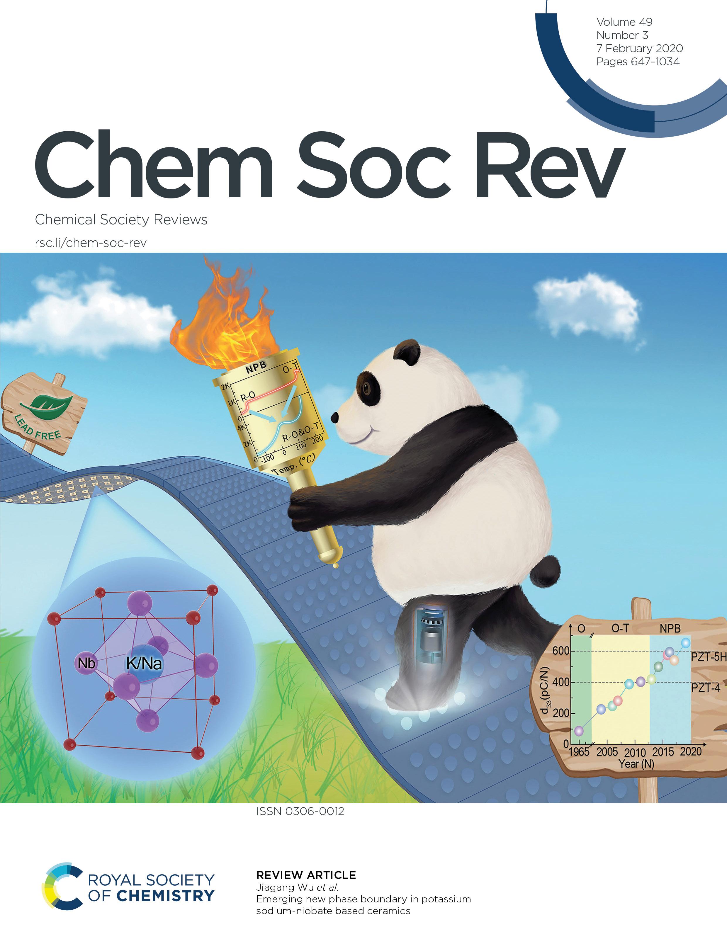 Chem Soc Rev 四川大学